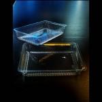caserole-caserole-plastic-miniprajituri-710-6