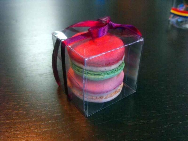 Cutiute plastic 2 Macarons