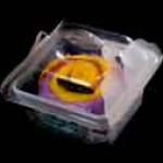casolete pentru prajituri Casolete pentru prajituri caserola 1 prajitura 1 150x150
