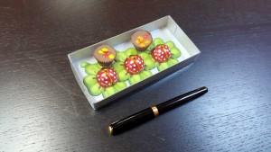 cutie din carton si plastic Cutie din carton si plastic pentru figurine din ciocolata 339ab 3 300x169