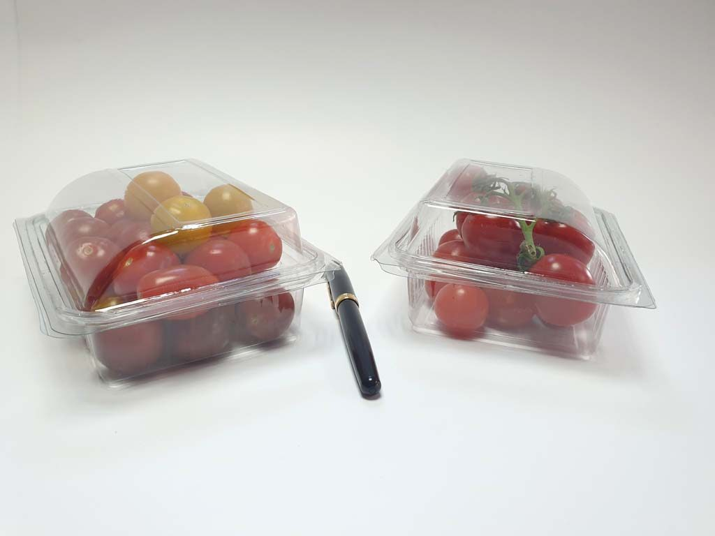 4097 - bacarat fructe si legume (8)